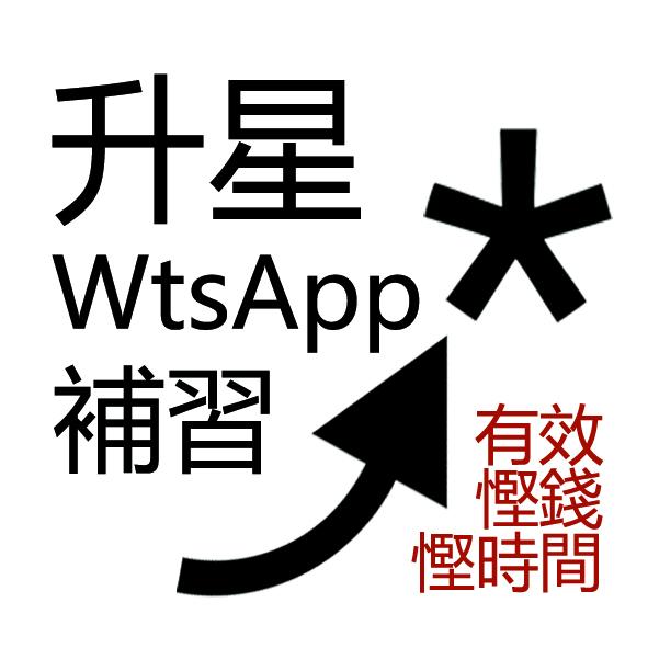 香港補習老師 Tutor : 英文WtsApp補習 - Alan [AL 3A CE 28分] (設義補及試堂) @青年創業軍